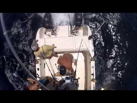 "Offshore fishing in Ocean City, MD aboard ""Kylee's World"""