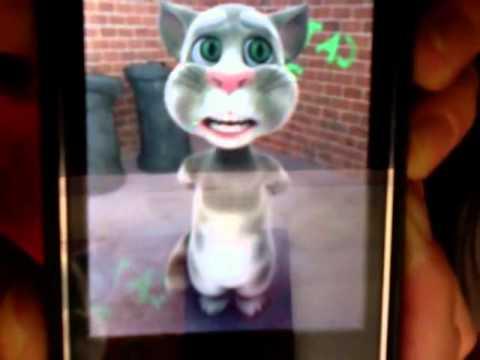 Il Gatto Tom Tom Ha Un Messaggio Per BOB DYLAN!!