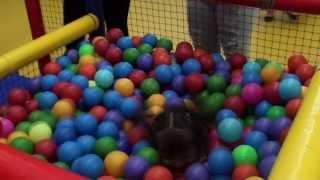 Salones de Fiestas Infantiles- Sipirily- HD