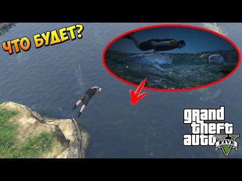 ловля кита на гта 5