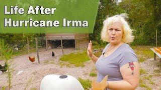 Life After Hurricane Irma