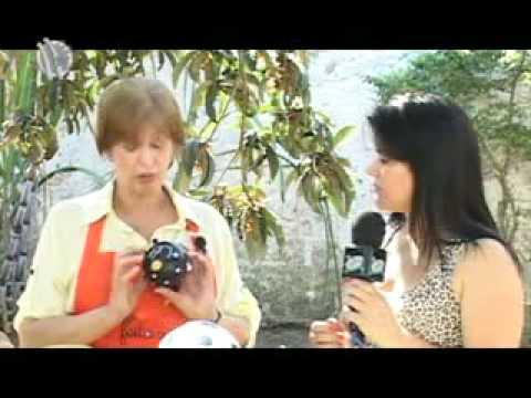 Tv de Bem com Erika Lemes: Aprenda a fazer uma galinha de caba�a: 28/09/2012