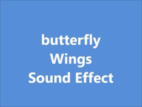 butterfly Wings Sound Effect