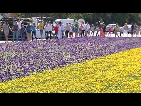 Почему Украина – не Россия? Главные различия - Гражданская оборона, 05.05