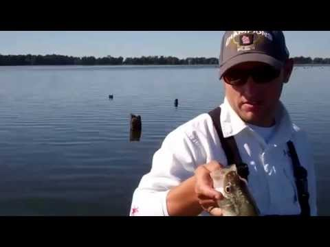 Crappie Fishing Reelfoot Lake, September 10, 2012 Josh and Chippy