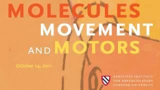 Molecules, Movement, and Motors