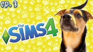 Making My Dog Dexter - The Sims 4: Raising YouTubers as PETS - Ep 3 (Cats & Dogs Expansion)