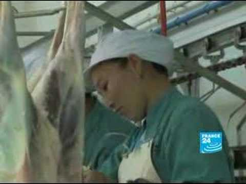 Ningxia, China's Halal meat capital