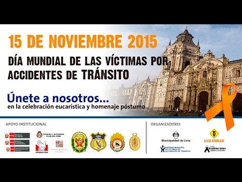 DÍA MUNDIAL DE LAS VÍCTIMAS POR ACCIDENTES DE TRÁNSITO 2015