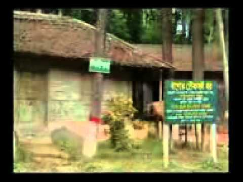 Activities of Bangladesh Forest Research Institute (BFRI) Part-02
