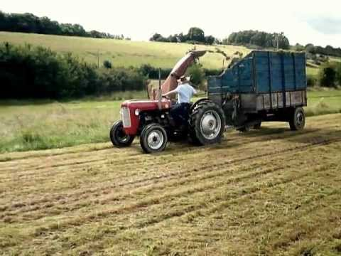 Silage cutting / vintage