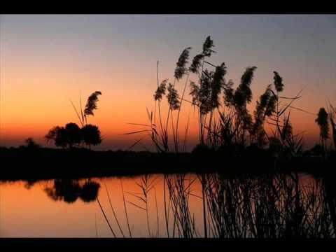 - малахов календарь геннадий раздельного и лечебного