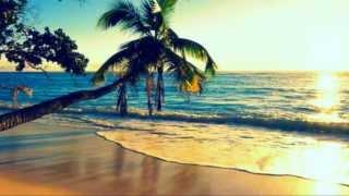 download lagu White Sandy Beach Of Hawai'i- Israel Kamakawiwo'ole gratis
