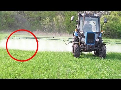 Обработка пшеницы гербицидом, фунгицидом, жидкими удобрениями | 3ч. Выращивание Пшеницы