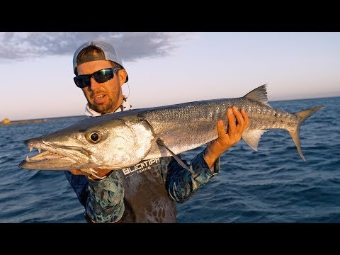Fishing for Bahamian Barracuda and Giant Houndfish in the Bahamas - 4K