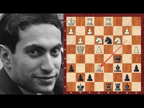 Mikhail Tal (Magician from Riga!) with the Black pieces at the 1966 Havana Olympiad (Chessworld.net)