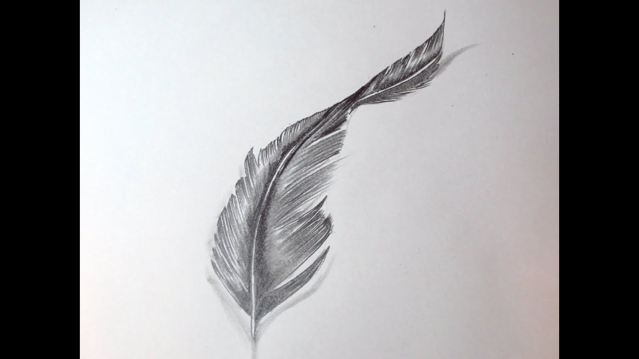 maxresdefault jpgEagle Feather Pencil Drawing