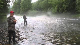 рыбалка на хариуса на неве