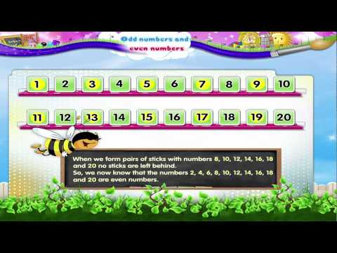 Std 2 - Maths - Odd Numbers and Even Numbers
