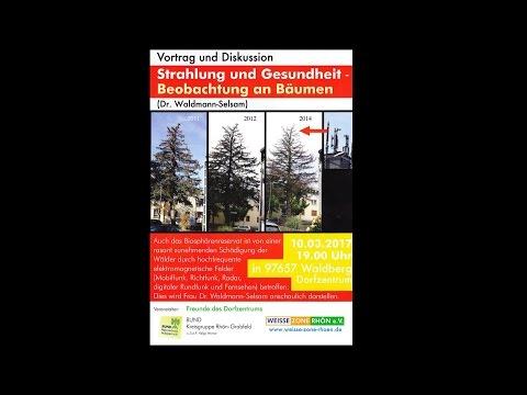 Vortrag Strahlung und Gesundheit   Beobachtungen an Bäumen