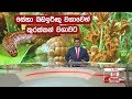 Derana Lunch Time News 18/01/2019