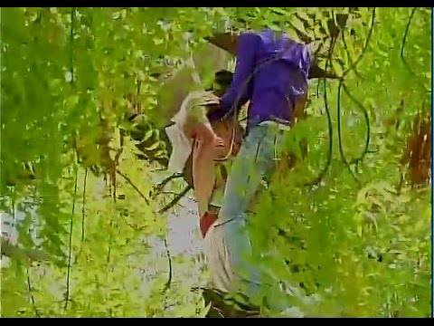 Farmer attempts suicide at Aam Aadmi Party rally