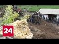 Смертельный оползень: киргизы не прислушались к спасателям