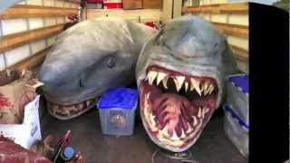 █▬█ █ ▀█▀ Historic And First Two-Headed Mutant Shark Discovered on Florida سمكه قرش براسين