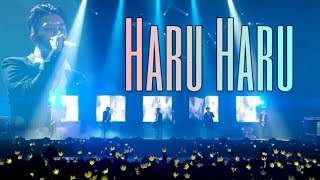Haru Haru live @Seoul
