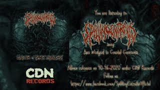 SPILLING ENTRAILS - AXE WEDGED IN CRANIAL CONTENTS [SINGLE] (2020) SW EXCLUSIVE
