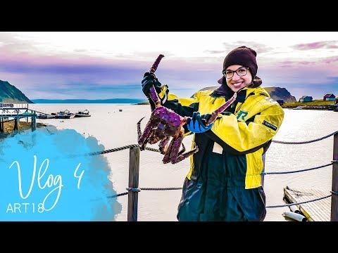 Vlog 4 (ART18) - MS Artania - Krabbensafari - Phoenix Reisen