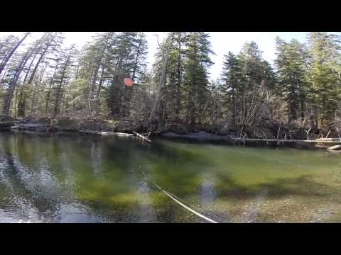 Steelhead fishing on the Situk River