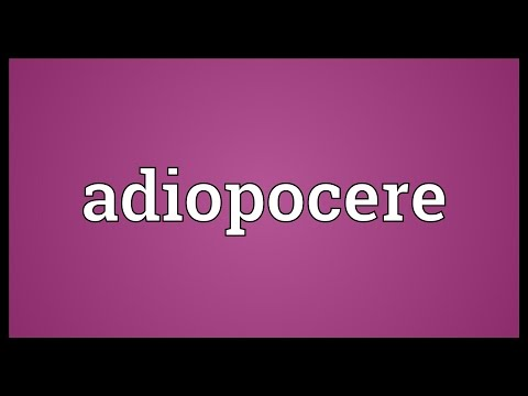 Header of Adiopocere