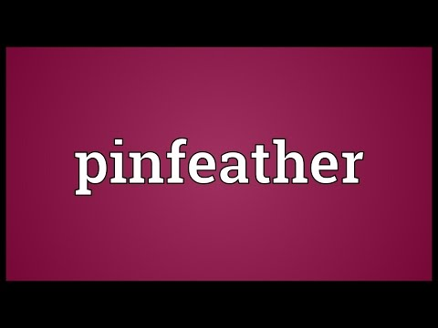 Header of pinfeather