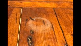 Really works! Remove water stains in wood with a hair dryer!
