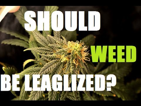 *BLACK OPS 2* WHY IS WEED ILLEGAL?