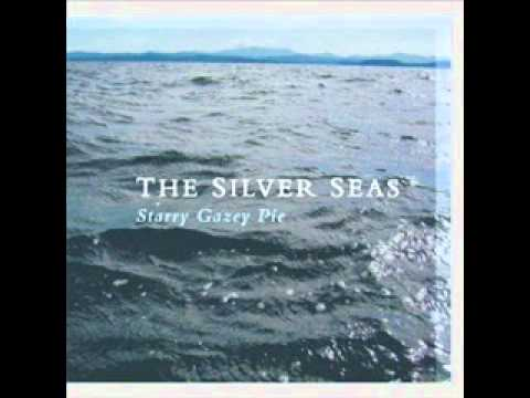 The Silver Seas - It's Only Gravity (The Bees)