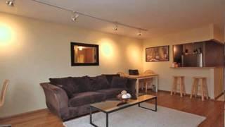 1455 N Sandburg Terrace Un 2207B