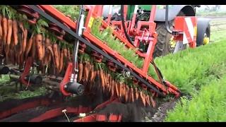 AMAZING Compilation Modern Fruit Harvesting Machines Technology 2017