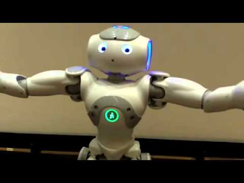 Toy Robots For Adults 109