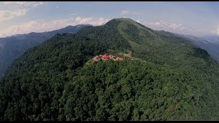 WILD PLANET - Luxury Jungle Resort- Longer Version