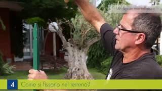 Rete recinzione plastica: tracciamento area da recintare e posa dei pali