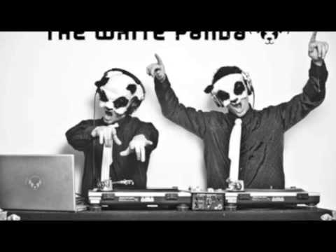 The White Panda- Escape Day 'N' Nite