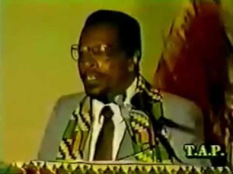 Dr  Amos Wilson   Blueprint For Black Power