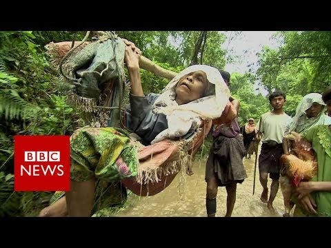 In the jungle with Rohingya refugees feeling Myanmar - BBC News