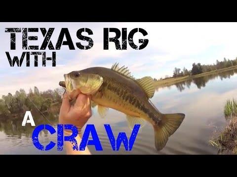 Texas Bass Rig Bass Fishing Texas Rig And a