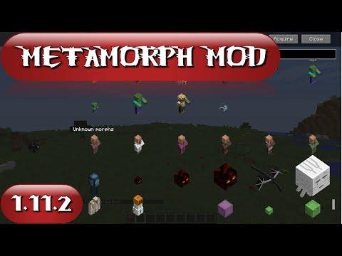 METAMORPH MOD (1.11.2)! Conviertete en cualquier MOB! Minecraft review en español 2017