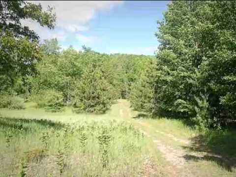 Real estate for sale in Luther Michigan MLS# 21109707