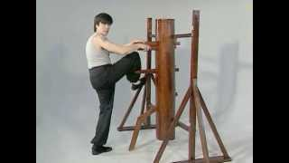 Preview - Randy Williams - Wooden Dummy Vol 5 - Basic Exercises