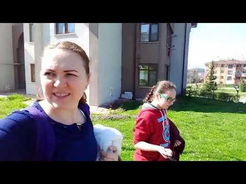 ТУРЦИЯ Live Channel ДЕНЬ БЕЗ МУЖА / ПАПЫ